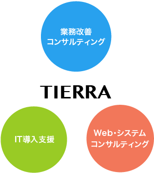 TIERRAのコンサルティング